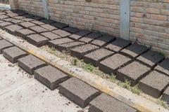 Adobe bricks dry in La Campa village, Hondur. As stock image