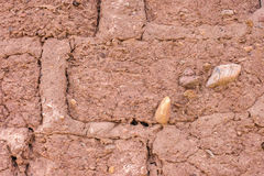 Adobe bricks wall Royalty Free Stock Image