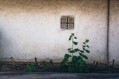 Adobe clay wall house Royalty Free Stock Photo