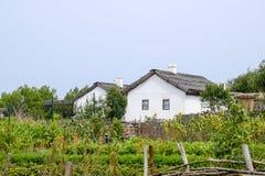 Adobe-Hütte mit einem Dach von Schilfen Wohnsitz-Kosakefamilie Stockfotos