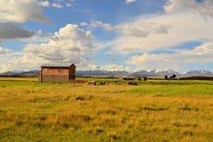 Adobe-Landwirt House in der Landschaft von Bolivien Lizenzfreie Stockbilder