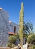 Adobe-Leben in der Wüste Lizenzfreie Stockbilder