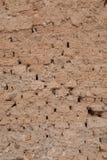 Adobe tegelstenvägg med sliten-av murbruk Royaltyfri Foto