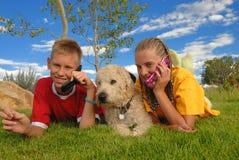 Adolescencias con los teléfonos y el perro   Foto de archivo