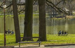 Adolescencias en el parque fotos de archivo libres de regalías