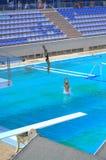 Adolescencias que saltan en piscina al aire libre Foto de archivo libre de regalías