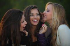 Adolescencias que susurran secretos Imagen de archivo libre de regalías