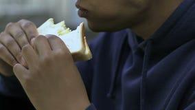 Adolescent seul mangeant le sandwich dans la cantine scolaire, étranger, problème racial banque de vidéos
