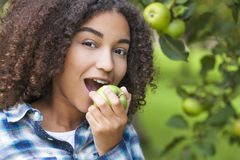 Adolescente afroamericano de la muchacha de la raza mixta que come Apple Fotos de archivo