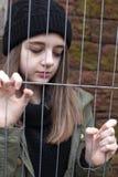 Adolescente bonito que agarra una cerca de alambre Foto de archivo