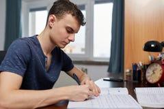Adolescente che fa compito con il computer Fotografie Stock Libere da Diritti