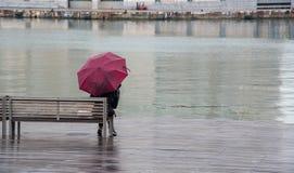 Adolescente che ssitting su un banco di legno nella pioggia Fotografie Stock Libere da Diritti