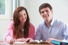 Adolescente che studia con l'istitutore domestico Fotografie Stock