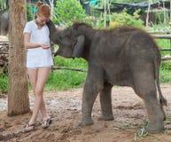 Adolescente con el elefante del bebé Fotos de archivo