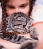Adolescente con el gatito foto de archivo libre de regalías