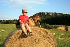 Adolescente con el perro en el prado Foto de archivo