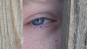 Adolescente del muchacho que mira a escondidas en la grieta en la opinión ascendente cercana de la cerca o de la entrada almacen de video