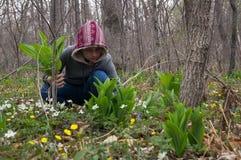 Adolescente del niño de la muchacha en el hallazgo y los cortes del bosque las primeras flores de snowdrops Fotografía de archivo