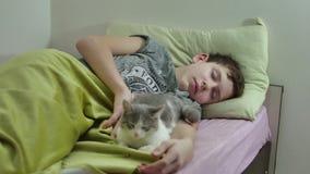 Adolescente dormido en cama sirva dentro dormir lanudo cansado del adolescente y el gato del animal doméstico almacen de metraje de vídeo