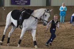Adolescente ecuestre que salta del caballo Fotos de archivo libres de regalías