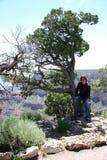 Adolescente en árbol Imágenes de archivo libres de regalías