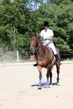 Adolescente en caballo con el polvo que sopla alrededor Imagenes de archivo