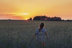 Adolescente en campo del verano en luz caliente de la puesta del sol Foto de archivo libre de regalías