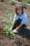 Adolescente en el jardín Fotos de archivo