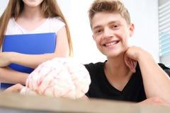 Adolescente en la lección de la anatomía Fotos de archivo