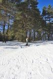 Adolescente en snowboard Imágenes de archivo libres de regalías