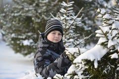 Adolescente en un bosque del pino en invierno Fotos de archivo