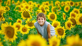 Adolescente en un campo del girasol Imagen de archivo libre de regalías