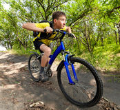 Adolescente en una bicicleta que viaja en el bosque Imagen de archivo libre de regalías