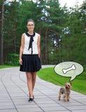 Adolescente en uniforme escolar que camina con el perro hambriento Yorkshire Imágenes de archivo libres de regalías