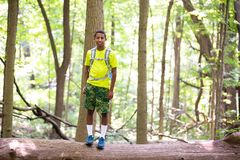 Adolescente encima del árbol caido en el día de Forest Preserve During Hot Summer imagenes de archivo
