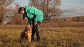 Adolescente feliz enojado y que juega con el perro en parque y la sonrisa del otoño almacen de video