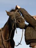 Adolescente, frenillo y su caballo imagen de archivo