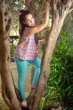 Adolescente hermoso en un olivo Imagen de archivo
