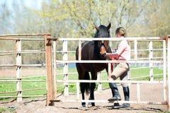 Adolescente joven con su caballo marrón en corral Foto de archivo libre de regalías