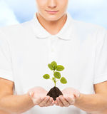 Adolescente joven y hermoso que sostiene el suelo con una planta Imagen de archivo libre de regalías