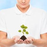 Adolescente joven y hermoso que sostiene una planta Imagen de archivo