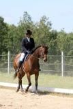 Adolescente negro que monta un caballo afuera Imágenes de archivo libres de regalías