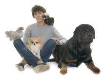 Adolescente, perros y pollo Foto de archivo libre de regalías