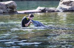 Adolescente que besa un delfín en una laguna del océano fotografía de archivo libre de regalías