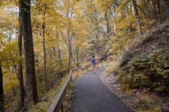 Adolescente que camina el rastro apalache durante temporada de otoño Imagenes de archivo
