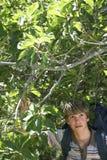 Adolescente que camina en bosque Imagen de archivo