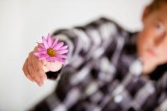 Adolescente que da a sola Daisy Flower púrpura Fotografía de archivo