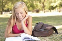 Adolescente que estudia en parque Imagenes de archivo