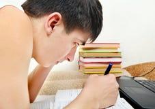 Adolescente que faz trabalhos de casa Imagens de Stock Royalty Free