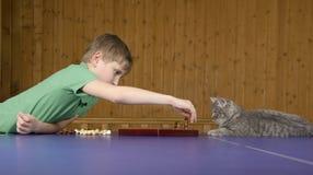 Adolescente que juega a ajedrez con un gato en una tabla del tenis Imágenes de archivo libres de regalías